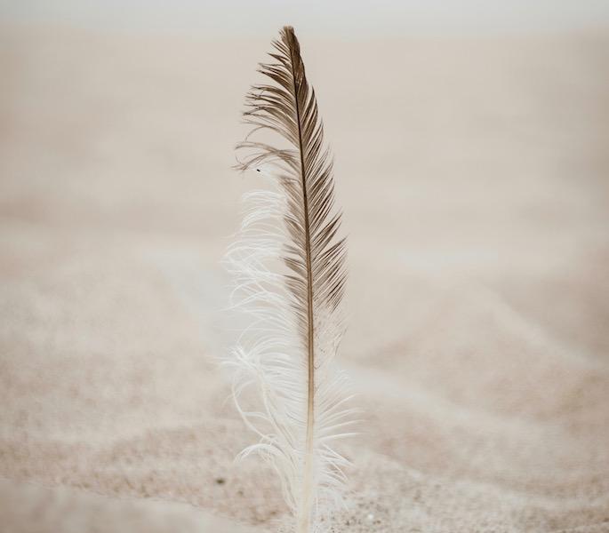 Befreiung durch Wahrnehmungsveränderung